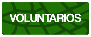 Voluntarias y voluntarios