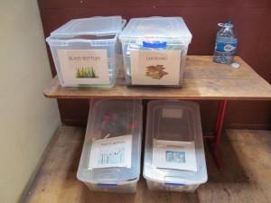 Casa Aventura recicla vidrio, cartón, plástico, tetra pack y tapas de plástico.