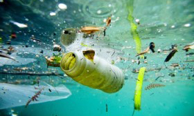 Proyecto contra contaminación de océanos vendrá a Valparaíso